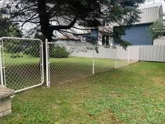 Chain Linke Fence 02
